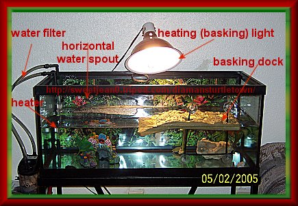we use the smaller tank below for feeding because they are very messy ...